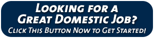 Looking for a Great Domestic Job?